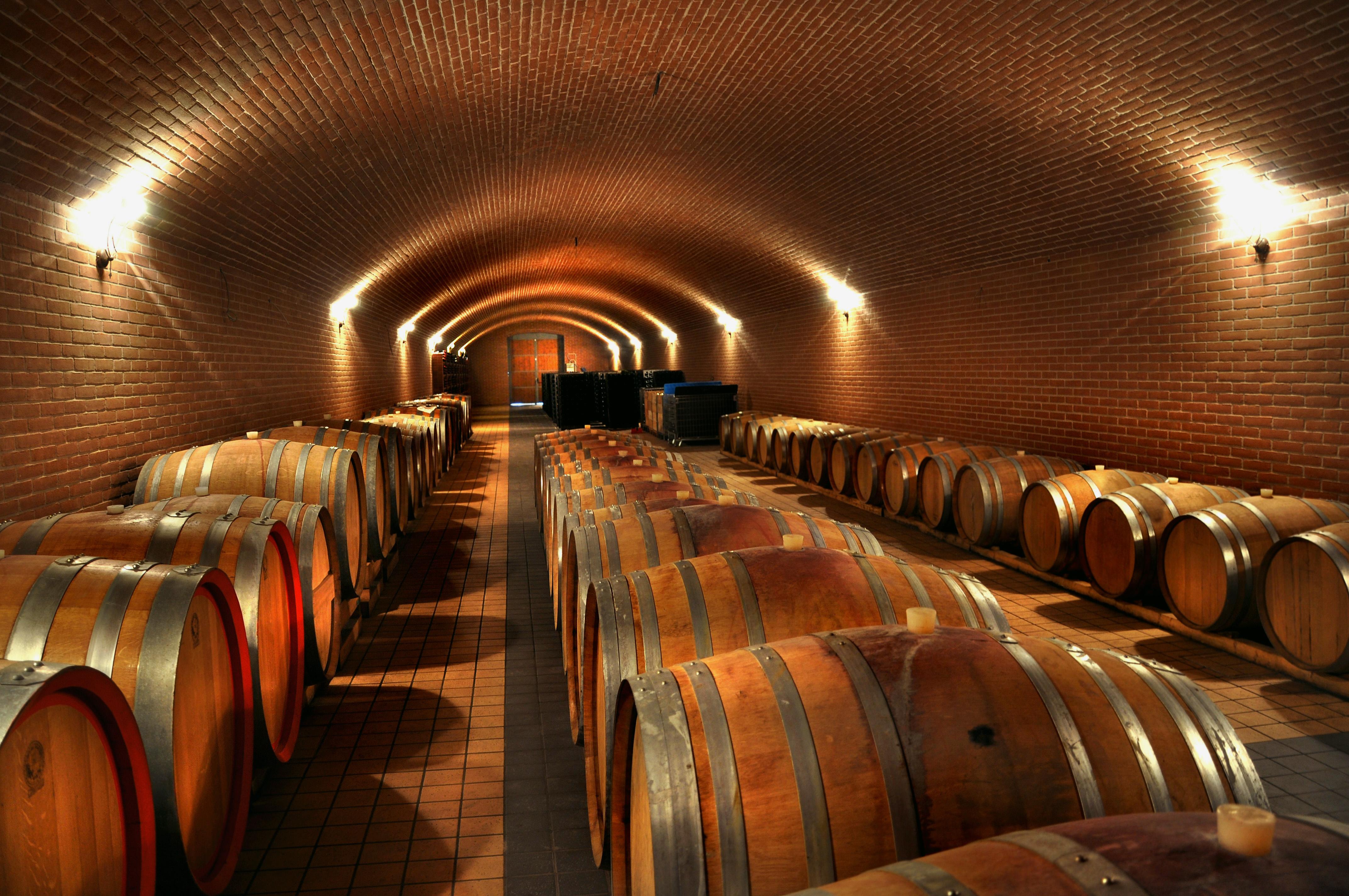Le vin de madiran est dans mon top des vins